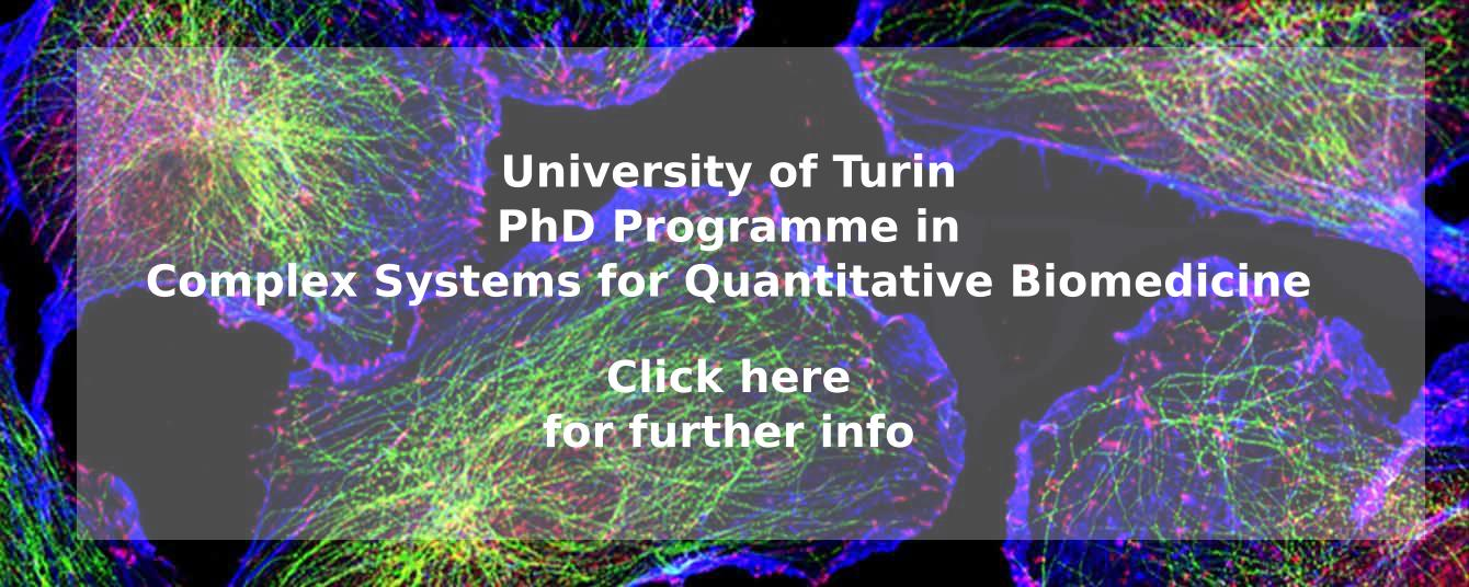 For discovering more about this PhD Programme